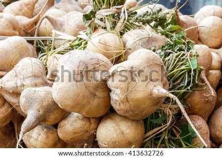 yam bean in the market