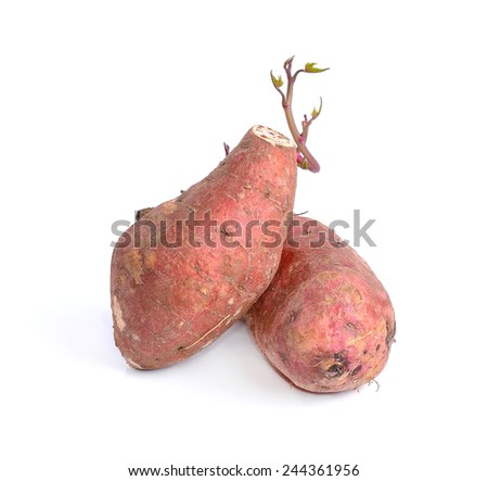 yams photographed on a white background. - stock photo