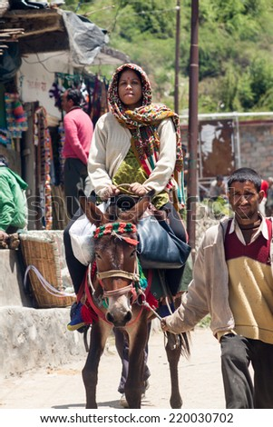 YAMUNOTRI, INDIA - MAY 17 - A female Hindu pilgrim being carried by a mule up to the temple of Yamuna in the Yamunotri Valley on May 17th 2013 in Yamunotri, India.