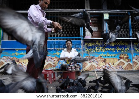 Yangon, Myanmar, July 3, 2015: Man feeding the pigeons at a street of Yangoon town.