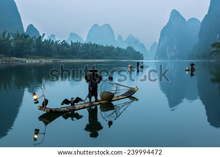 YANGSHUO, CHINA - OCTOBER 16: Chinese fishermans fishing with cormorants birds in Yangshuo, Guangxi , traditional fishing use trained cormorants to fish, October 16, 2013 Yangshuo in Guangxi, China - stock photo