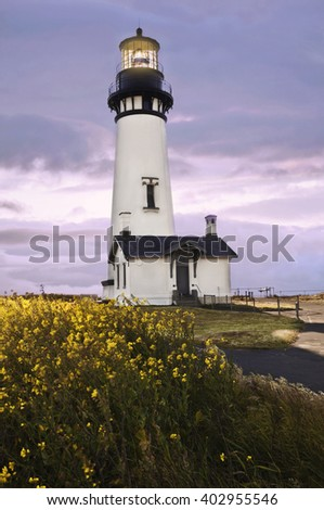 Yaquina Head Lighthouse, Newport, Oregon with yellow scotch broom flowers in foreground/Standing lighthouse with glowing light and yellow flowers in foreground