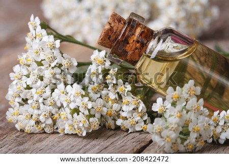 Yarrow oil in the bottle close-up on a background of flowers on the table. horizontal   - stock photo