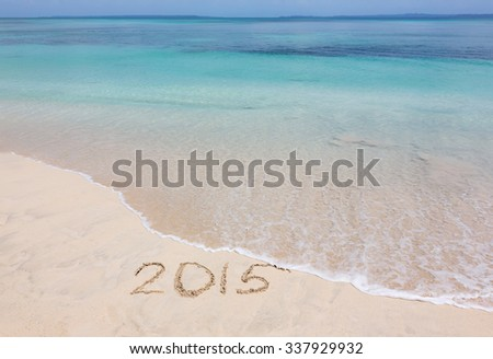 Year 2015 is washed away by ocean wave