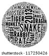 Year of the snake 2013 info-text graphics arrangement concept on white background - stock photo