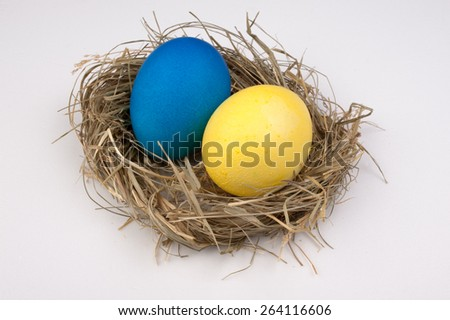 yellow and blue easter eggs in nest isolated on white background. ukraine
