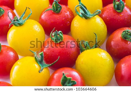 Yellow and Red Cherry Tomatoes - stock photo