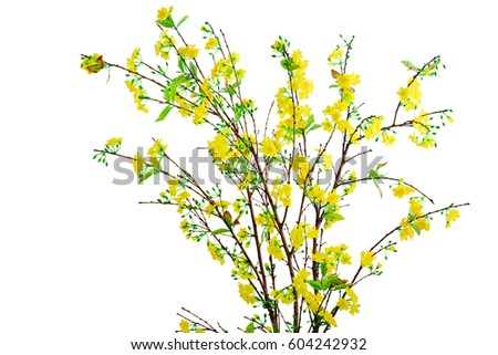 Yellow apricot flower artificial isolated on white background