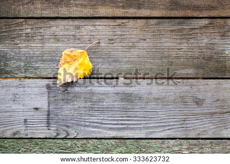 Yellow autumn leaf lays on a dark gray wooden table made of boards, background photo texture - stock photo