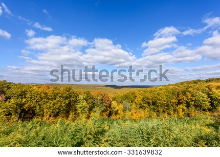 Yellow autumn trees with blue sky
