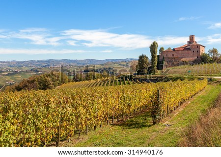 Yellow autumnal vineyards and small medieval castle on background in Piedmont, Northern Italy. - stock photo