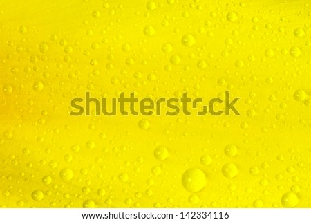 yellow background of flower petal with drops - stock photo