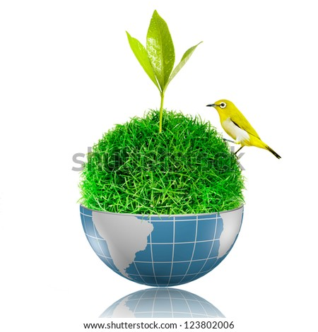 Yellow bird on the ball of grass inside the globe with plant growing