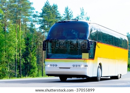 yellow bus on a forest road