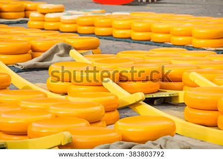 Yellow cheeses - stock photo
