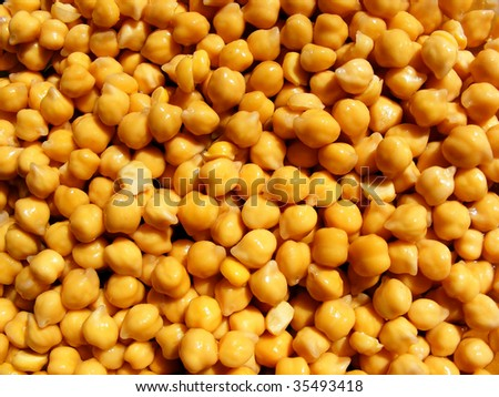 Yellow chick-peas background - stock photo