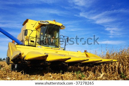 Yellow combine in a maize field - stock photo