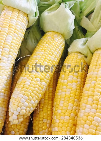 Yellow corn at the farmers market  - stock photo