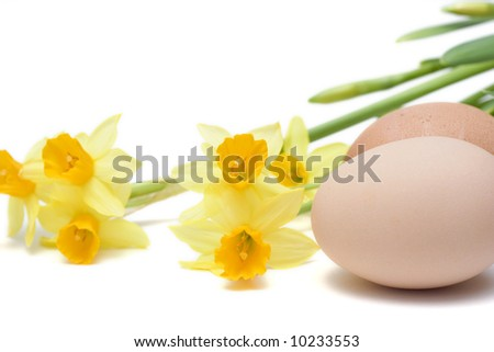yellow daffodils and eggs isolated on white - stock photo