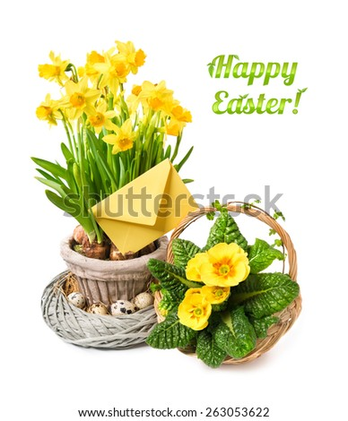 "Yellow daffodils and primrose on white background, blank envelope, space for your text. Caption ""Happy Easter"" with leaves."