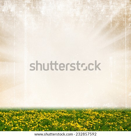 Yellow dandelion flowers on a abstract bokeh background - stock photo