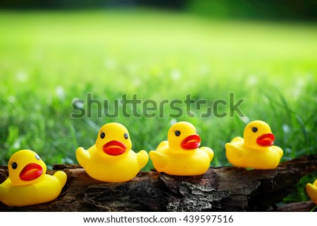 yellow duck on glass field.(Select focus)