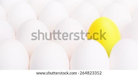 yellow egg between many white eggs on white background - stock photo