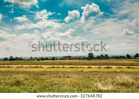 Yellow  field under the beautiful clouds