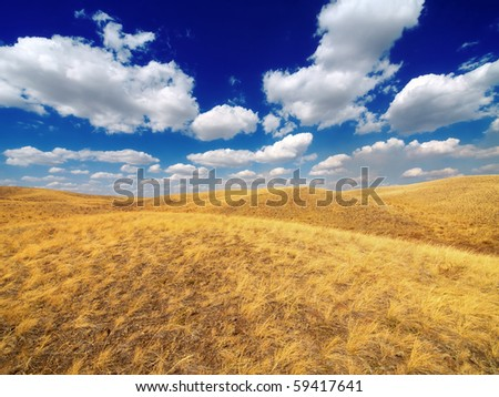 Yellow fields and bright blue sky. South Ural mountains, Russia.