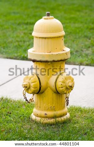 Jd S Portfolio On Shutterstock