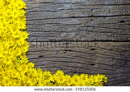 Yellow Flower on Wooden Background, with the space for the text - stock photo
