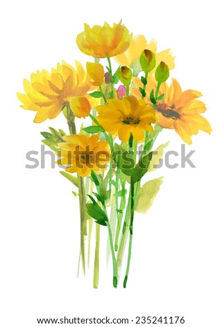 yellow flower watercolor hand-painted, isolated on white