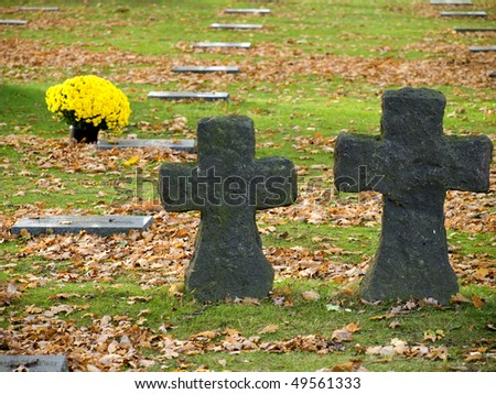 Yellow flowers, crosses and the tombstones at the German war cemetery near Ypres, Belgium