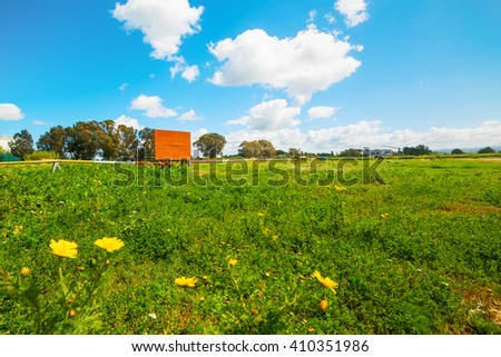 yellow flowers in a green field under a blue sky - stock photo