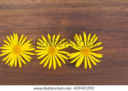 Yellow flowers on a simple wooden covering background