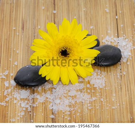 yellow Gerber flowers with black stone and many white salt and wooden board