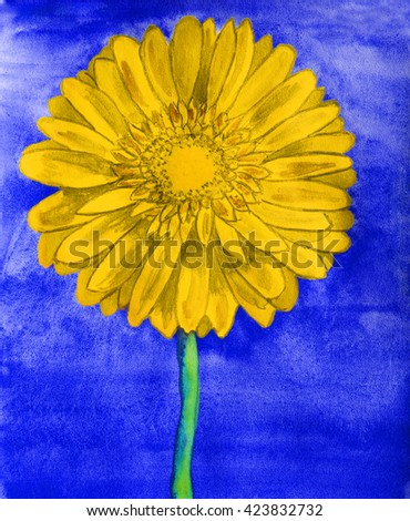 Yellow gerbera flower on blue background, watercolor painting. - stock photo
