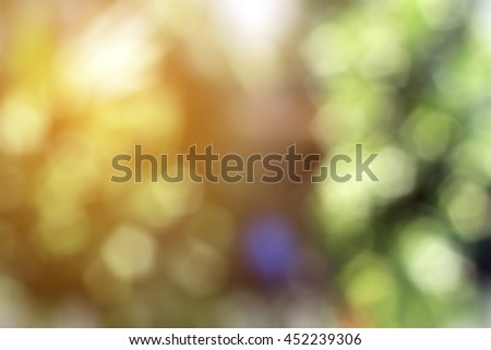 Yellow green soft sunshine light gradient blur bokeh, nature scene background, sparkle bling glitter particle dot shiny. Lens blur camera effect vintage backdrop style, black narrow shadow thin line. - stock photo