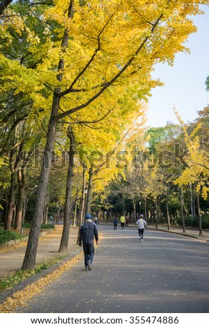 Yellow leaves tree in Japanese park in autumn season - stock photo