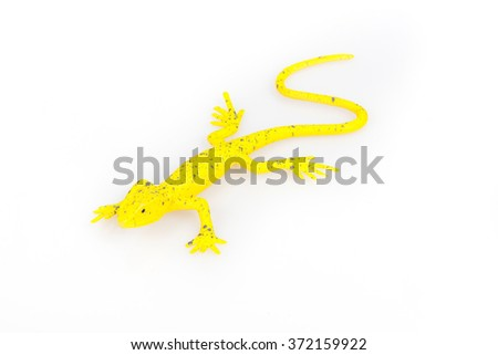 Yellow lizard on a white background - stock photo