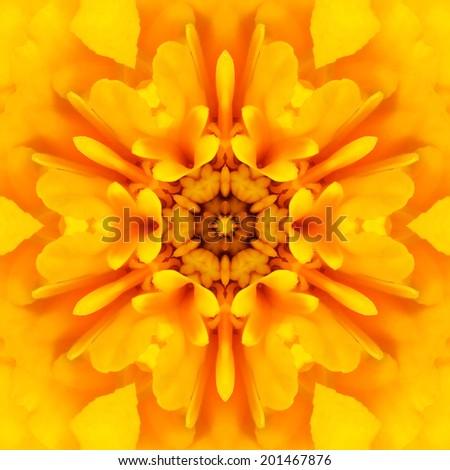 Yellow Mandala Concentric Dahlia Flower Kaleidoscope Center. Kaleidoscopic Design Pattern - stock photo