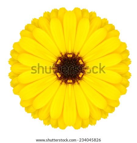 Yellow Mandala Flower Ornament. Kaleidoscope Round Design Pattern Isolated on White Background - stock photo
