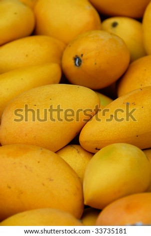 Yellow mango background