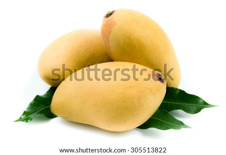 Yellow mango isolated on white background