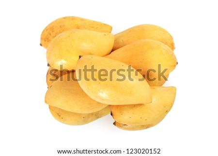 Yellow mango, thai fruit isolated on white background - stock photo