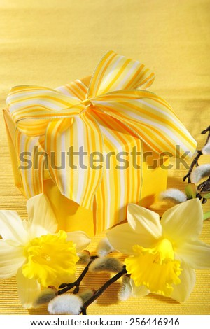 yellow mothersday present with narcissus and pussy willow on yellow tablecloth  - stock photo