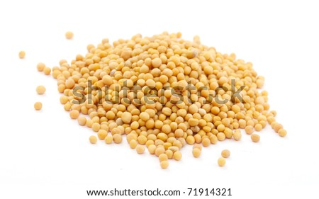 Yellow mustard seeds isolated on white background - stock photo