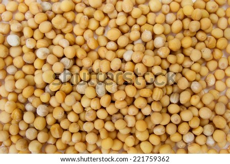 Yellow mustard seeds spices