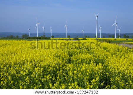 Yellow oilseed rapeseed field under the blue sky with sun - stock photo