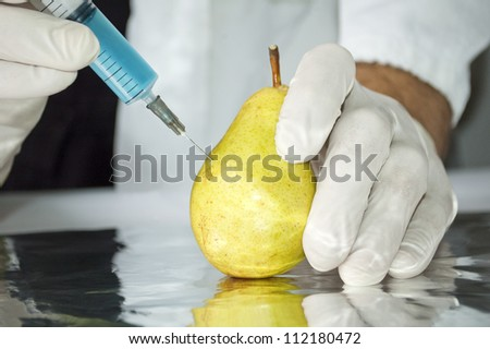 Yellow pear in genetic engineering laboratory, gmo food concept - stock photo
